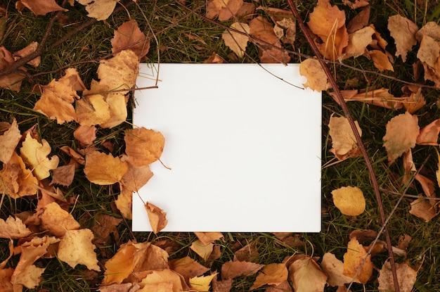 乾燥した葉の上の空白の白い紙