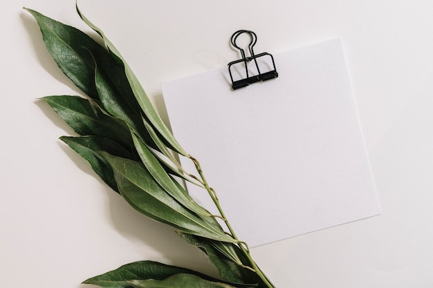 Blank white paper with black paperclip and twig on white background