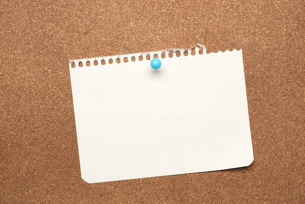 Blank white sheet of paper attached with blue button