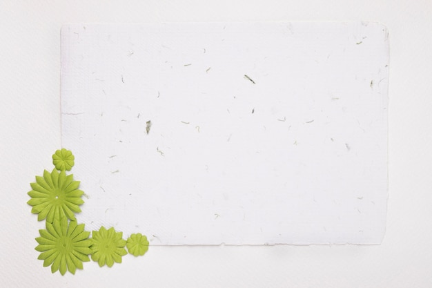 Blank white textured paper decorated with green flowers against background