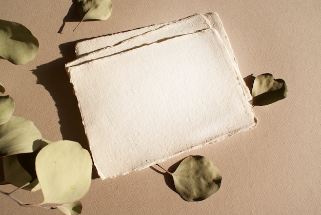 Blank white wedding greeting invitation cards s with dried eucalyptus leaves on textured table backgound. elegant modern template for branding identity. flat lay, top view