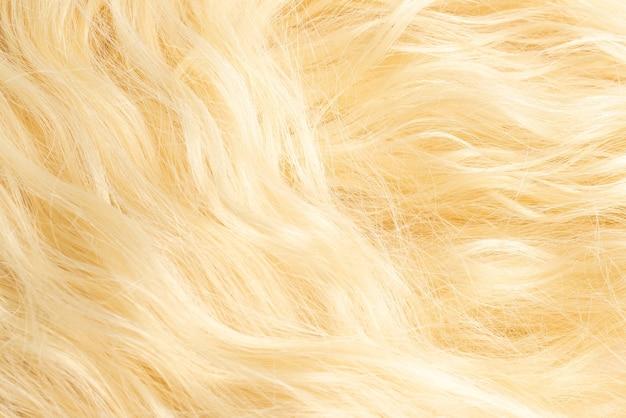 Blond  beautiful wavy hair pattern. top view.