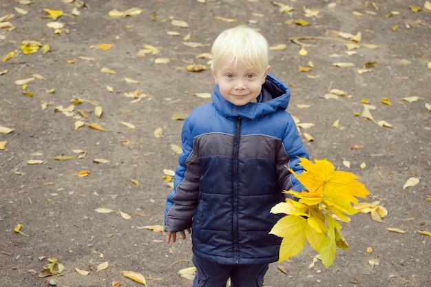 Белокурый мальчик с желтыми листьями в руке. портрет