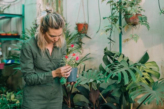 Blonde female gardener taking care of flowering plants in the nursery