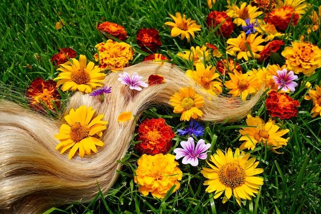 푸른 잔디 배경 평면도 미용사 서비스에 꿀 금발 머리의 금발 머리 잠금 가닥 ...