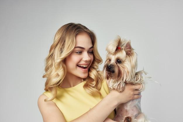 黄色のドレスを着た金髪の小さな犬の孤立した背景をお楽しみください Premium写真