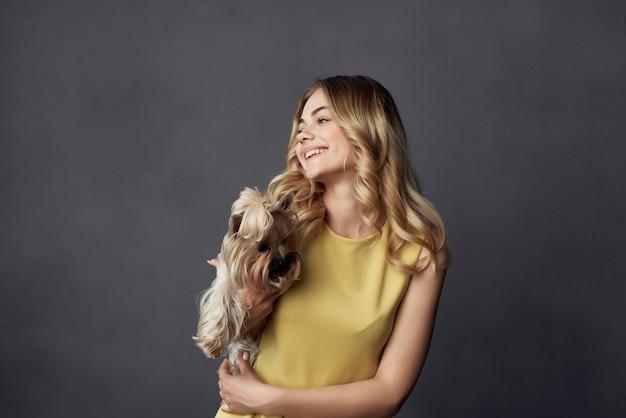 トリミングされたビューのファッションをポーズする小さな犬のメイクとブロンド