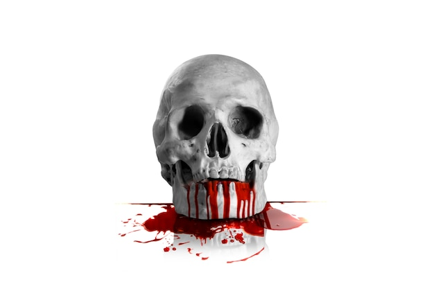 Blood and skull