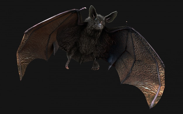Blood thirsty vampire bat swooping on dark