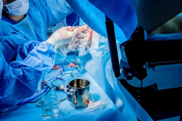 血痕のある手術器具を備えた滅菌ラテックス手袋を着用した外科医の血まみれの手。外科的結腸直腸手術を行うプロセス。