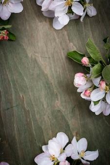 Blooming apple tree. spring background