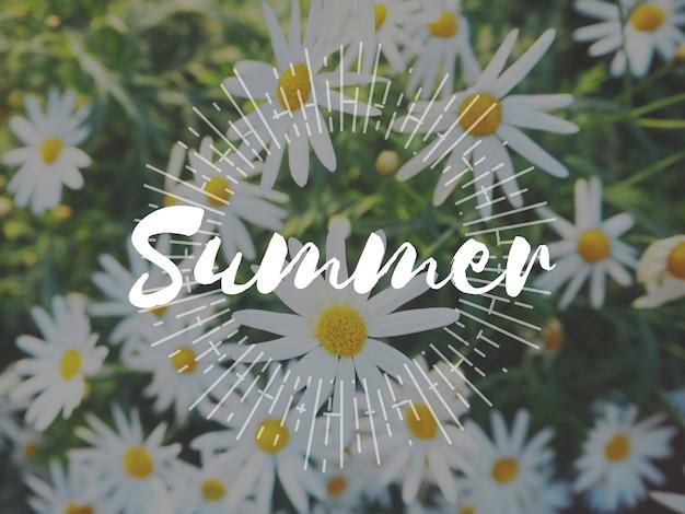 咲く植物の花園自然夏