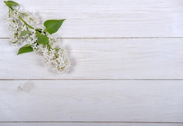 Цветущая ветка белой сирени на белом деревянном фоне. использовать в качестве фона