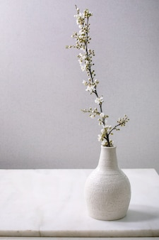 Blooming cherry branches in craft white porcelain vase on white marble table. spring flowers interior decorations.