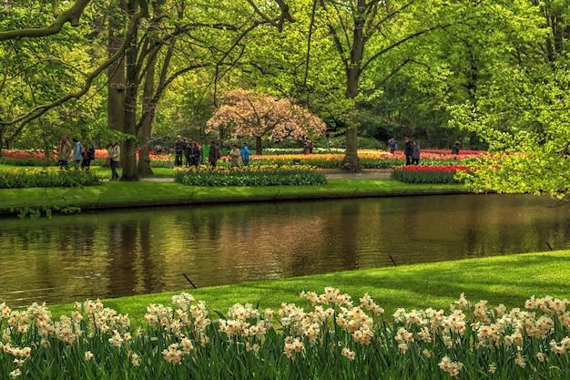 Keukenhof 공원의 개화 꽃