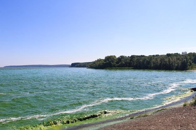 드니프르 강의 저수지에 피는 녹색 물