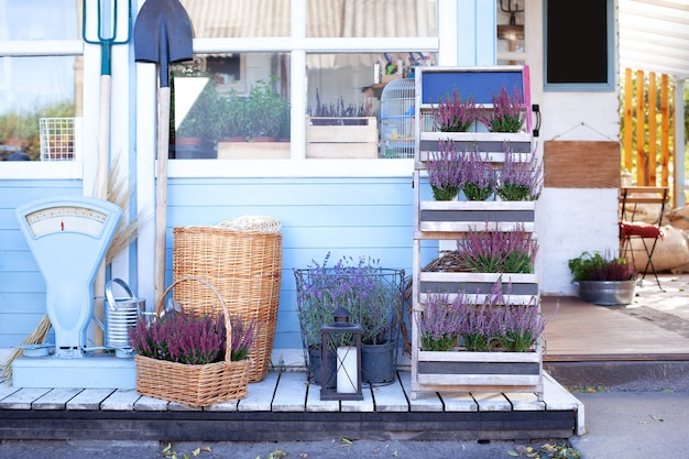 Blooming heather, wicker baskets and garden tool in backyard home