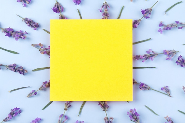Blooming purple lavender with copy space on yellow paper