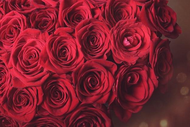 개화 장미, 꽃 꽃, 발렌타인 데이 선물 개념 - 빨간 장미 꽃다발, 꽃이 만발한 꽃 휴가 배경. 신선한 짙은 붉은 장미는 질감 배경을 닫습니다. 소프트 포커스입니다.