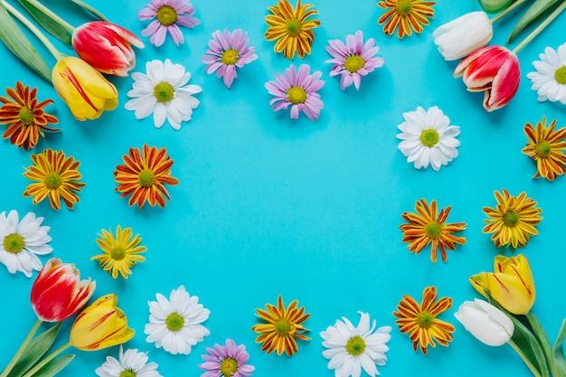 Цветущие нежные цветы на синем