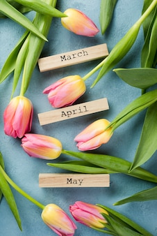 Blooming tulips with spring months tags