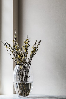 Blooming willow flowers in a bouquet in a vase on the table. spring background