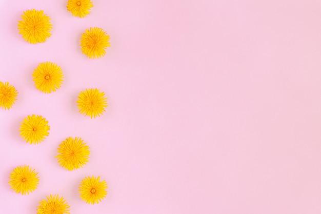 ピンクの紙の背景フラット上のフォームフレームに咲く黄色のタンポポの花はコピースペースで横たわっていた