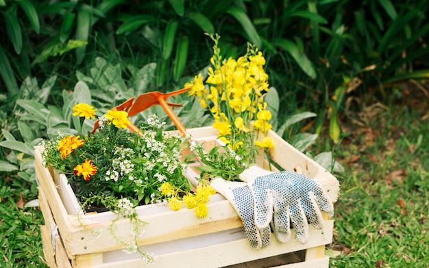 나무 상자에 꽃과 정원 장비