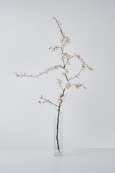 白いテーブルの上の花瓶のブロッサムチェリーブランチミニマルスタイルの装飾コンセプト