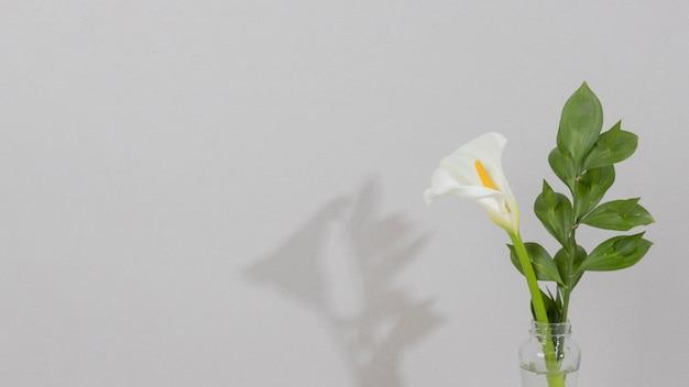 テーブルの上の花瓶の花の花