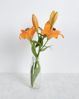 Blossom flower in vase on table