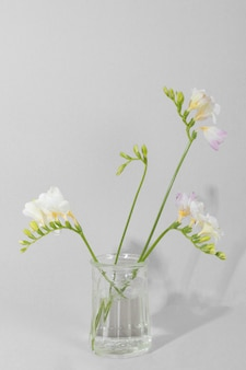 Blossom flowers in vase on table