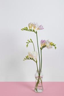 Blossom fiori in vaso sul tavolo