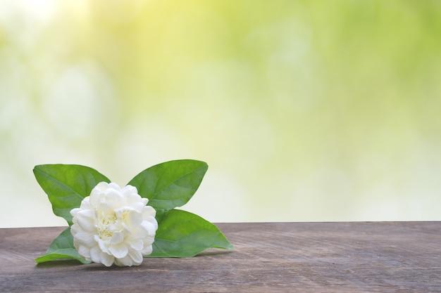 Blossom jasmine on wooden plate against summer background