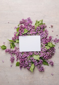 Blossom  mock up frame with lilac flowers on purple background