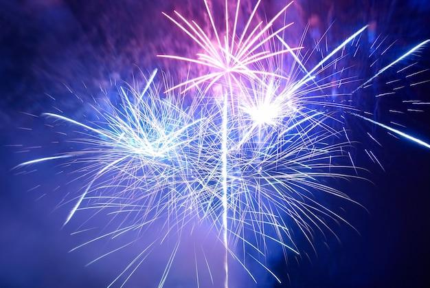 검은 하늘 배경에 파란색과 보라색 화려한 불꽃 놀이. 휴일 축하.