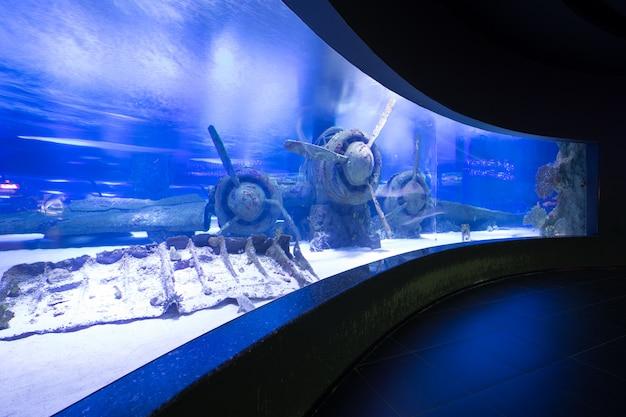 Blue aquarium interior