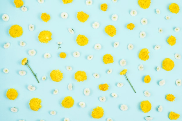 Blue background decorated with white and yellow flower
