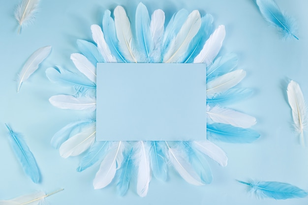 Blue background with feathers and paper for notes, copyspace.