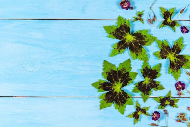 녹색 나뭇잎과 꽃과 파란색 배경 복사 공간