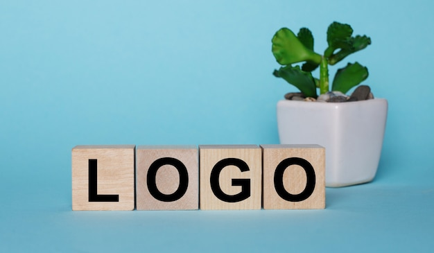 On a blue background, on wooden cubes near a plant in a pot logo is written