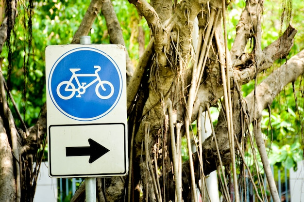Blue bicycle sign with arrow sign pole in the park