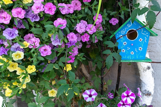A blue birdhouse hangs on a birch surrounded by petunia flowers.