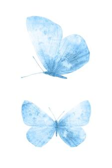 白い背景に分離された青い蝶。熱帯の蛾