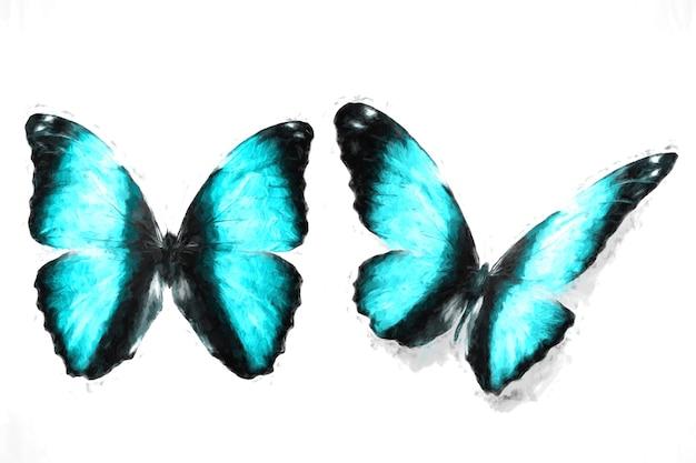 파란 나비. 천연 곤충. 흰색 배경에 고립