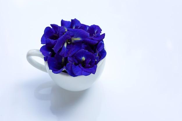白い背景の上の白いカップの青い蝶エンドウ豆の花。