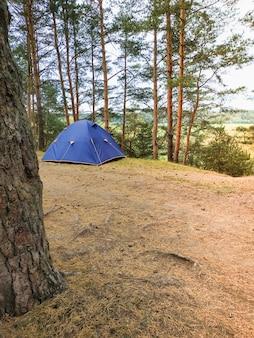 松林の青いキャンプテント。アクティブな家族の休日