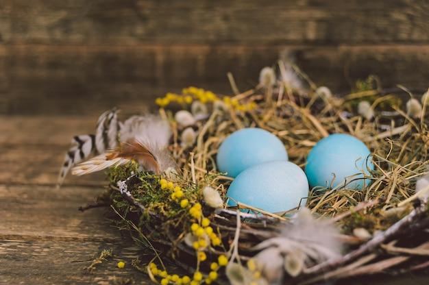 깃털이 있는 둥지에 있는 파란 건방진 알. 보드의 배경.