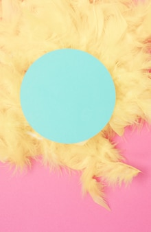 Blue circular frame over the yellow feathers against pink background