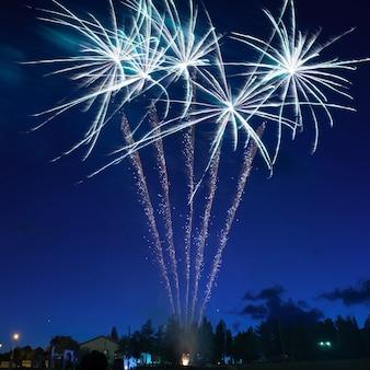 밤 하늘 배경에 파란색 화려한 불꽃 놀이